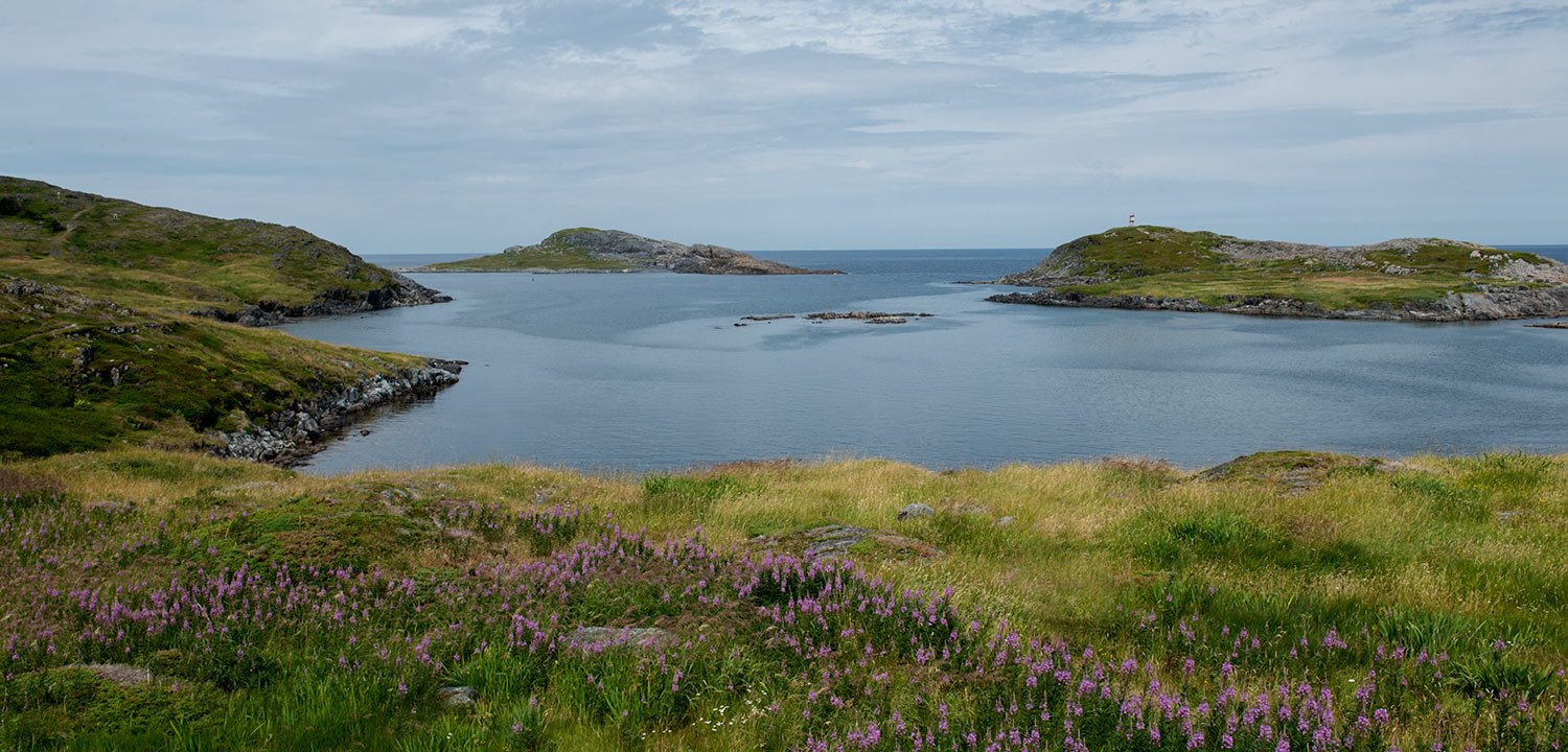 Fogo Island landscape