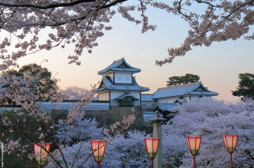 Kanazawa Castle an early spring evening with blossoming cherry trees
