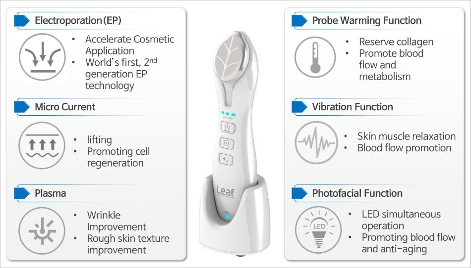 Summary of Leaf key technologies