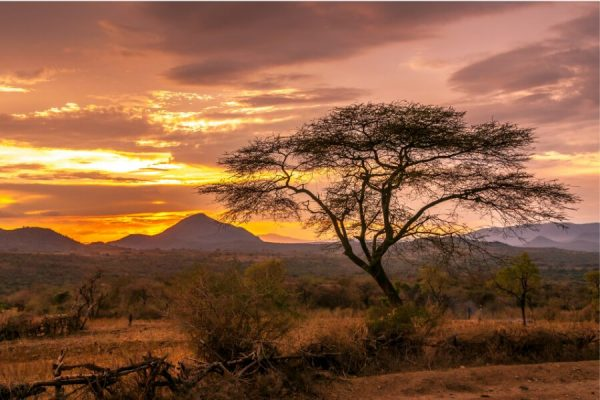 African sunset over the svannah with mountains at the horizon