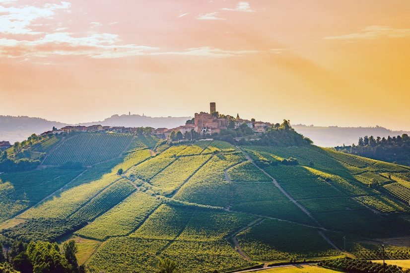 Vineyards and hilltop village in Italy